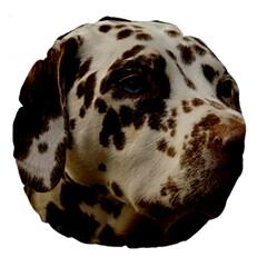 Dalmatian Liver Large 18  Premium Round Cushions