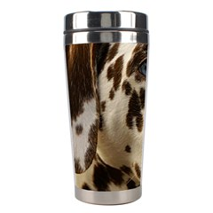 Dalmatian Liver Stainless Steel Travel Tumblers