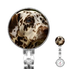 Dalmatian Liver Stainless Steel Nurses Watch