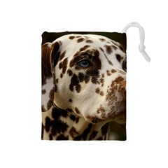 Dalmatian Liver Drawstring Pouches (Medium)