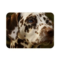 Dalmatian Liver Double Sided Flano Blanket (Mini)