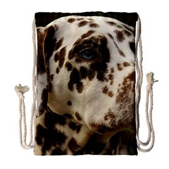 Dalmatian Liver Drawstring Bag (Large)