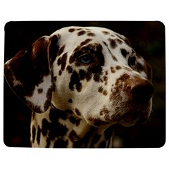 Dalmatian Liver Jigsaw Puzzle Photo Stand (Rectangular)