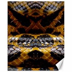 Textures Snake Skin Patterns Canvas 16  x 20