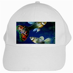 Marine Fishes White Cap