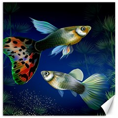 Marine Fishes Canvas 12  x 12