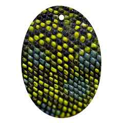 Lizard Animal Skin Oval Ornament (Two Sides)