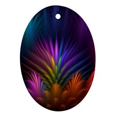Colored Rays Symmetry Feather Art Oval Ornament (Two Sides)