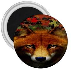Fox 3  Magnets