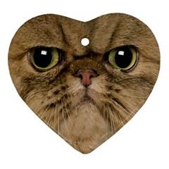 Cute Persian Catface In Closeup Ornament (Heart)