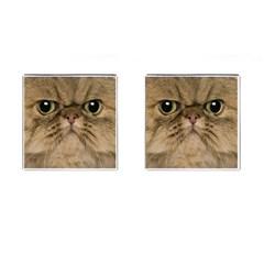 Cute Persian Catface In Closeup Cufflinks (Square)