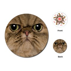 Cute Persian Catface In Closeup Playing Cards (Round)