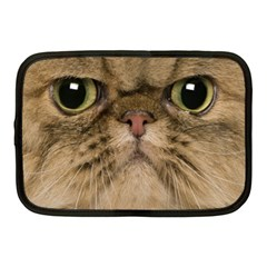 Cute Persian Catface In Closeup Netbook Case (Medium)