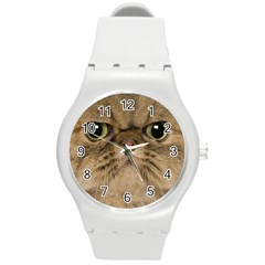 Cute Persian Catface In Closeup Round Plastic Sport Watch (M)