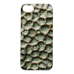 Ocean Pattern Apple iPhone 5S/ SE Hardshell Case