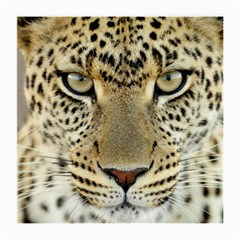 Leopard Face Medium Glasses Cloth (2-Side)