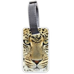 Leopard Face Luggage Tags (One Side)