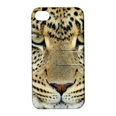 Leopard Face Apple iPhone 4/4S Hardshell Case with Stand