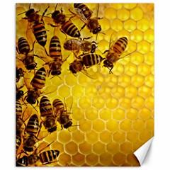 Honey Honeycomb Canvas 20  x 24