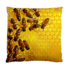 Honey Honeycomb Standard Cushion Case (Two Sides)