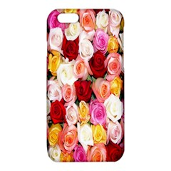Rose Color Beautiful Flowers iPhone 6/6S TPU Case