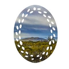 Patagonian Lanscape Scene, Santa Cruz, Argentina Ornament (oval Filigree)