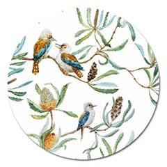 Australian Kookaburra Bird Pattern Magnet 5  (Round)