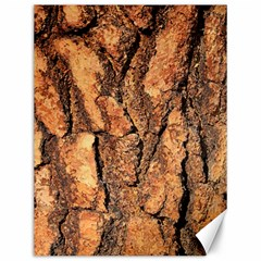 Bark Texture Wood Large Rough Red Wood Outside California Canvas 12  x 16