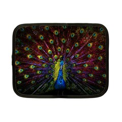 Beautiful Peacock Feather Netbook Case (Small)