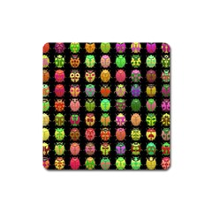 Beetles Insects Bugs Square Magnet