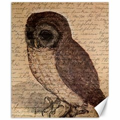 Vintage owl Canvas 8  x 10