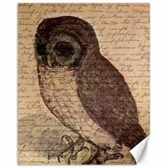 Vintage owl Canvas 16  x 20