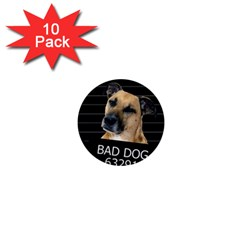 Bed dog 1  Mini Buttons (10 pack)