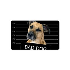 Bed dog Magnet (Name Card)