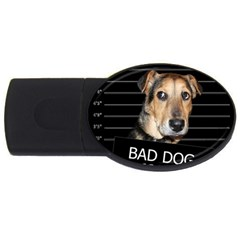Bed dog USB Flash Drive Oval (4 GB)