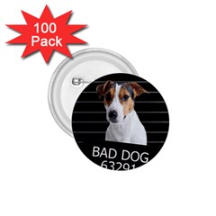 Bad dog 1.75  Buttons (100 pack)