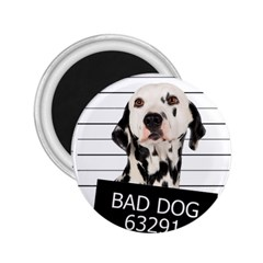 Bad dog 2.25  Magnets
