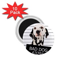 Bad dog 1.75  Magnets (10 pack)