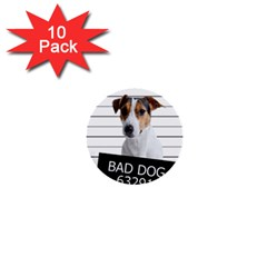 Bad dog 1  Mini Buttons (10 pack)