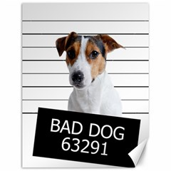 Bad dog Canvas 12  x 16