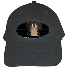 Bad dog Black Cap