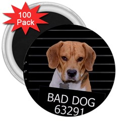 Bad dog 3  Magnets (100 pack)