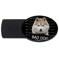 Bad dog USB Flash Drive Oval (2 GB)