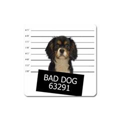 Bad dog Square Magnet