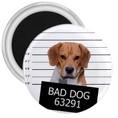 Bad dog 3  Magnets