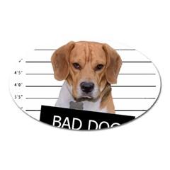 Bad dog Oval Magnet