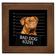 Bad dog Framed Tiles