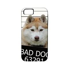 Bad Dog Apple Iphone 5 Classic Hardshell Case (pc+silicone)