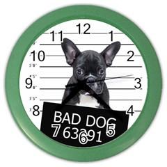Bad dog Color Wall Clocks