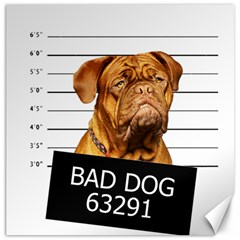 Bad dog Canvas 20  x 20